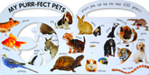 Animal Carry Me Around Peek-through Window Handle Board Book
