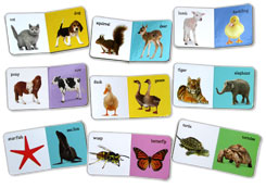 FIRST ANIMALS Chunky Board Books First Steps (9 Board Books)