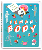 Lift The Flaps Human Body Board Book