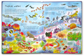 An Usborne Flap Book See under the Sea (With over 80 flaps to lift)