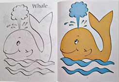 Sea Animals in the Kingdom of Allah Colouring Book - Children's Stories from the Quran