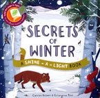Secrets of Winter A Shine-a-light Book (Paper Back) (SALE!!)