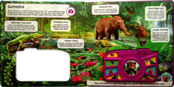 (SALE!) Jungle - Noisy Camera Adventure Sound Board Book with 8 Roar-some sounds